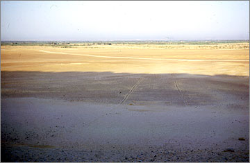 View eastwards in 1975 across the land of Akhetaten towards Tell el-Amarna. The parallel ridges of stones mark the sides of the ancient road leading to the stela