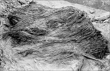 Grass roofing material in the debris of house Gate Street 11 (1921 photograph).