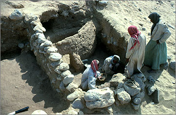 Animal pen (of the no. 300 group) during excavation.