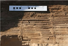 Figure 47. Detail of burial mat (12224), showing construction method, base of pit <11698>. View site south.