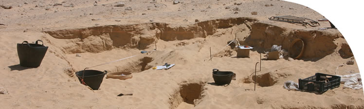 Excavations underway at the Lower Site at the South Tombs Cemetery in 2013