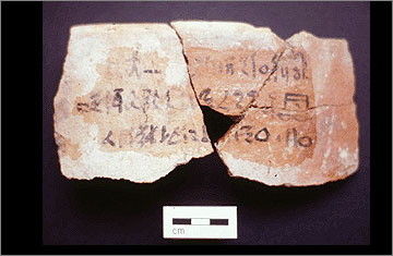 (Fig.25) Inscribed fragment of Canaanite amphora from Amarna mentioning nhh oil. Photograph courtesy of the Petrie Museum.