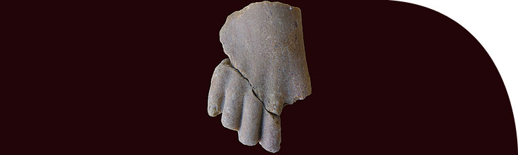 Foot from a quartzite statue of a princess, from Kom el-Nana. Catalogue number S.5994.
