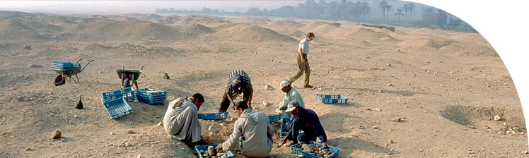 Collecting stone fragments from the North House dump on the desert surface.
