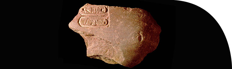 Shoulder from a quartzite statue of Akhenaten inscribed with the cartouches of the Aten.