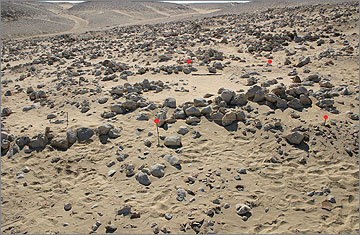 Caption: Trench 1 prior to excavation, facing south. The red dots mark the corners of the trench. Note the prominent east-west stone ridge across the northern margin of the trench.