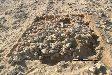 Trench 2 after removal of the surface deposits, showing the dense horizon of boulders, (11472). Facing west.