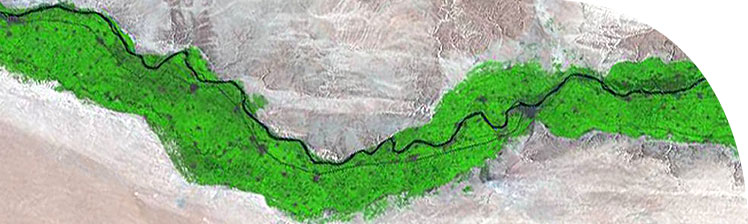 False-colour Landsat satellite image of the Nile Valley, Amarna slightly left of centre. North is to the left.